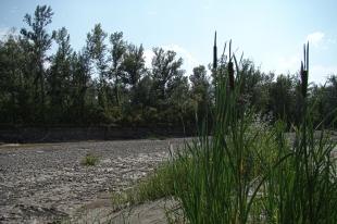 Valea_Prahovei012
